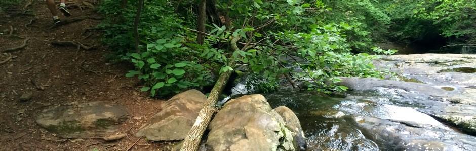 Wintergreen Rock Slide